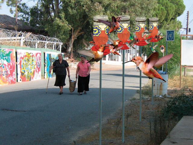 hummingbird_bufferzone1
